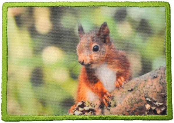 """Aufnäher """"Kleiner Baumkobold"""" - Eichhörnchen eckig"""