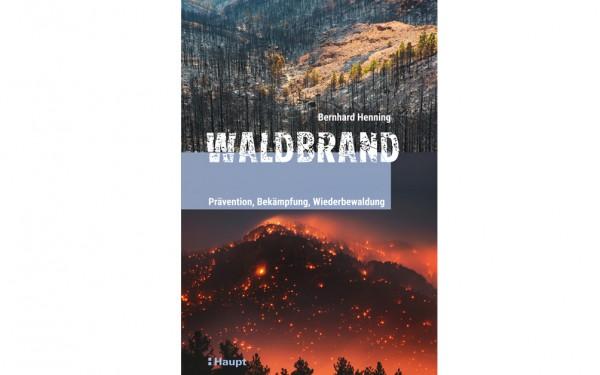 Waldbrand - Prävention, Bekämpfung, Wiederbewaldung