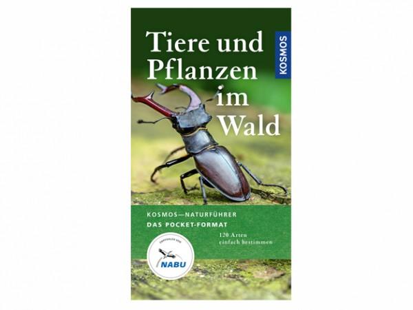 Tiere und Pflanzen im Wald - 120 Arten