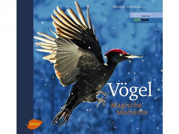 Vögel - Magische Momente