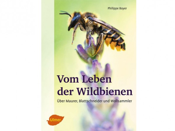 Vom Leben der Wildbienen