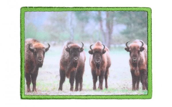 Aufnäher Europäischer Bison / Wisent
