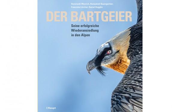 Der Bartgeier - Seine erfolgreiche Wiederansiedlung in den Alpen