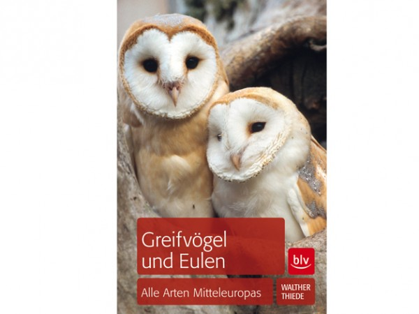 Greifvögel und Eulen - Alle Arten Mitteleuropas
