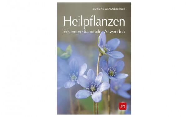 Heilpflanzen - Erkennen - Sammeln - Anwenden