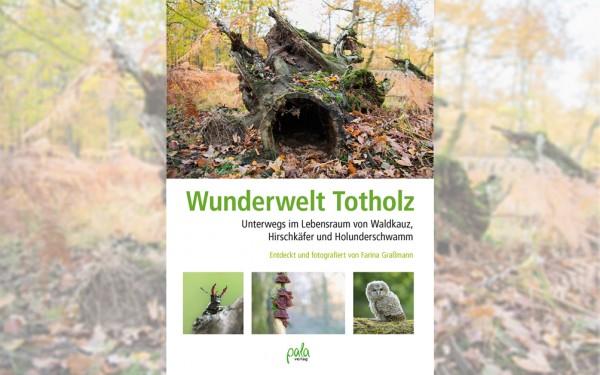 Wunderwelt Totholz - Farina Graßmann