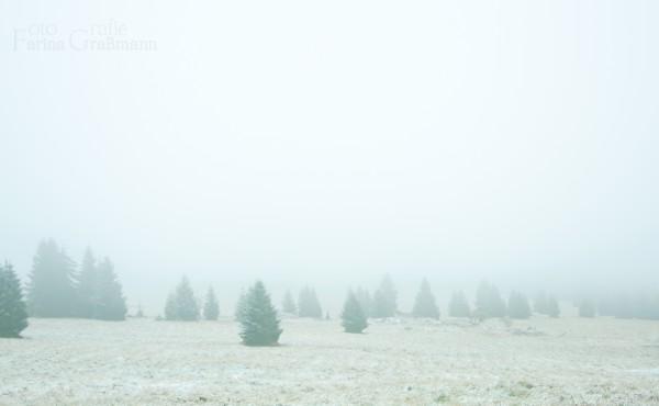 Tschechien-in-Nebel-3