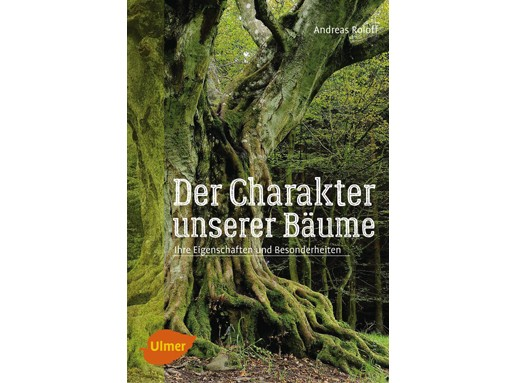 Der Charakter unserer Bäume