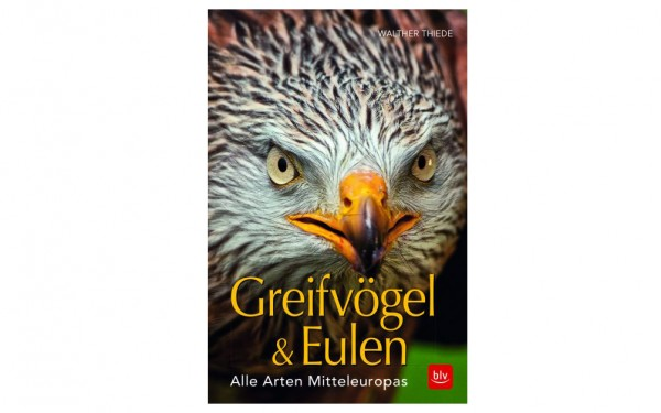 Greifvögel & Eulen - Walther Thiede