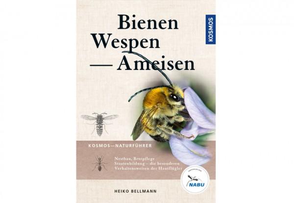 Bienen, Wespen, Ameisen
