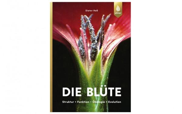 Die Blüte - Struktur, Funktion, Ökologie, Evolution