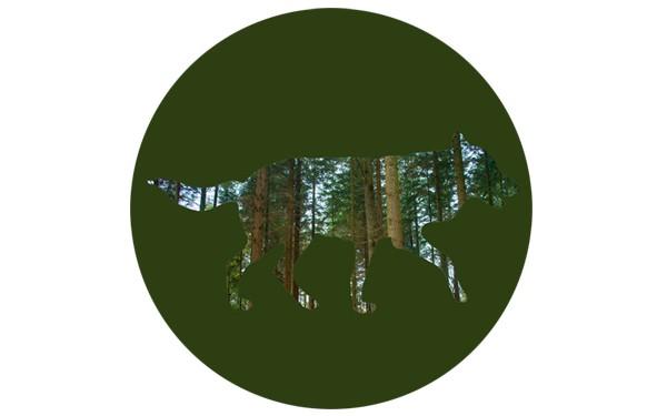 """Button """"Wald im Wolf"""" - 4,30 cm"""